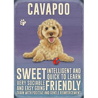Cavapoo Wall Plaque by The Original Metal Sign Co