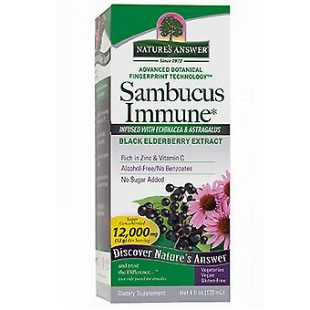 Nature's Antwoord Sambucus Immune Support, 4 oz