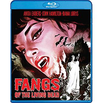 Fangs of the Living Dead [Blu-ray] USA import