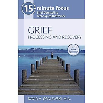 15-Minute Focus - Grief: Processing and Recovery: Brief Counseling Techniques That Work (15-Minute Focus)
