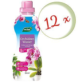 Sparset: 12 x WESTLAND® Orchids Water, 720 ml