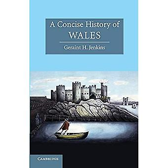 A Concise History of Wales (Cambridge Concise Histories) (Cambridge Concise Histories)