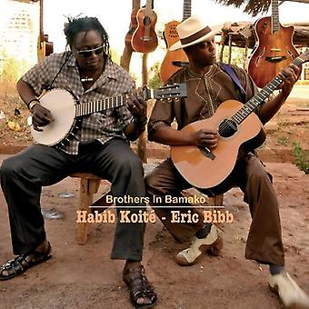 Eric Bibb & Habib Koite - Brothers in Bamako [CD] USA import
