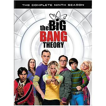 Big Bang Theory: Die komplette neunte Staffel [DVD] USA import