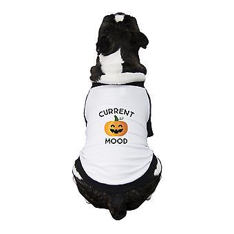 Citrouille actuel humeur mignon chien Shirt Raglan Halloween Pet T-Shirts