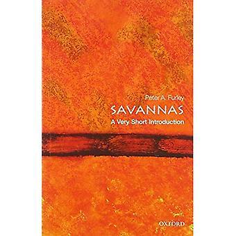 Savana: Uma introdução muito curta (introduções muito curtas)