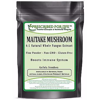 Hongo Maitake-4:1 polvo de extracto natural (Grifola frondosa)