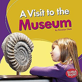A Visit to the Museum by Rosalyn Clark - 9781512433715 Book