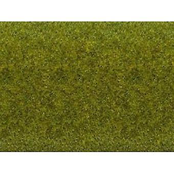 NOCH 00265 Layout matte Eng (L x B) 1200 mm x 600 mm