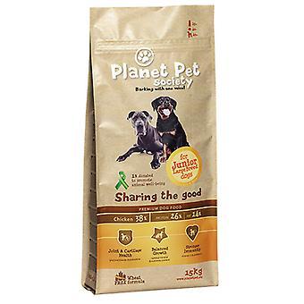 Planet Pet Pienso para Perros Junior Large de Pollo y Arroz (Dogs , Dog Food , Dry Food)