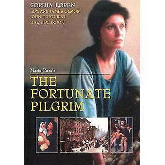 Fortunate Pilgrim [DVD] USA import
