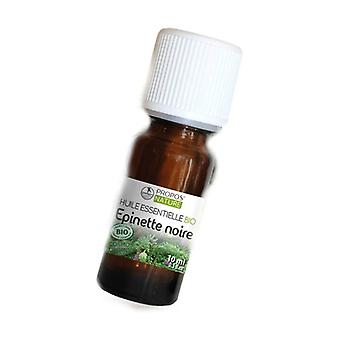Organic black spruce essential oil 10 ml of essential oil