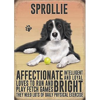Medium Wall Plaque 200mm x 150mm - Sprollie by The Original Metal Sign Co