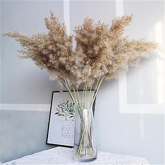 tørket pampas gress dekor bryllup blomst haug naturlig plante