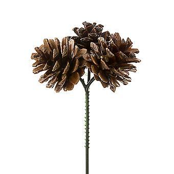 Selección de tres conos de pino de 15 cm para artesanías de floristería y fabricación de coronas