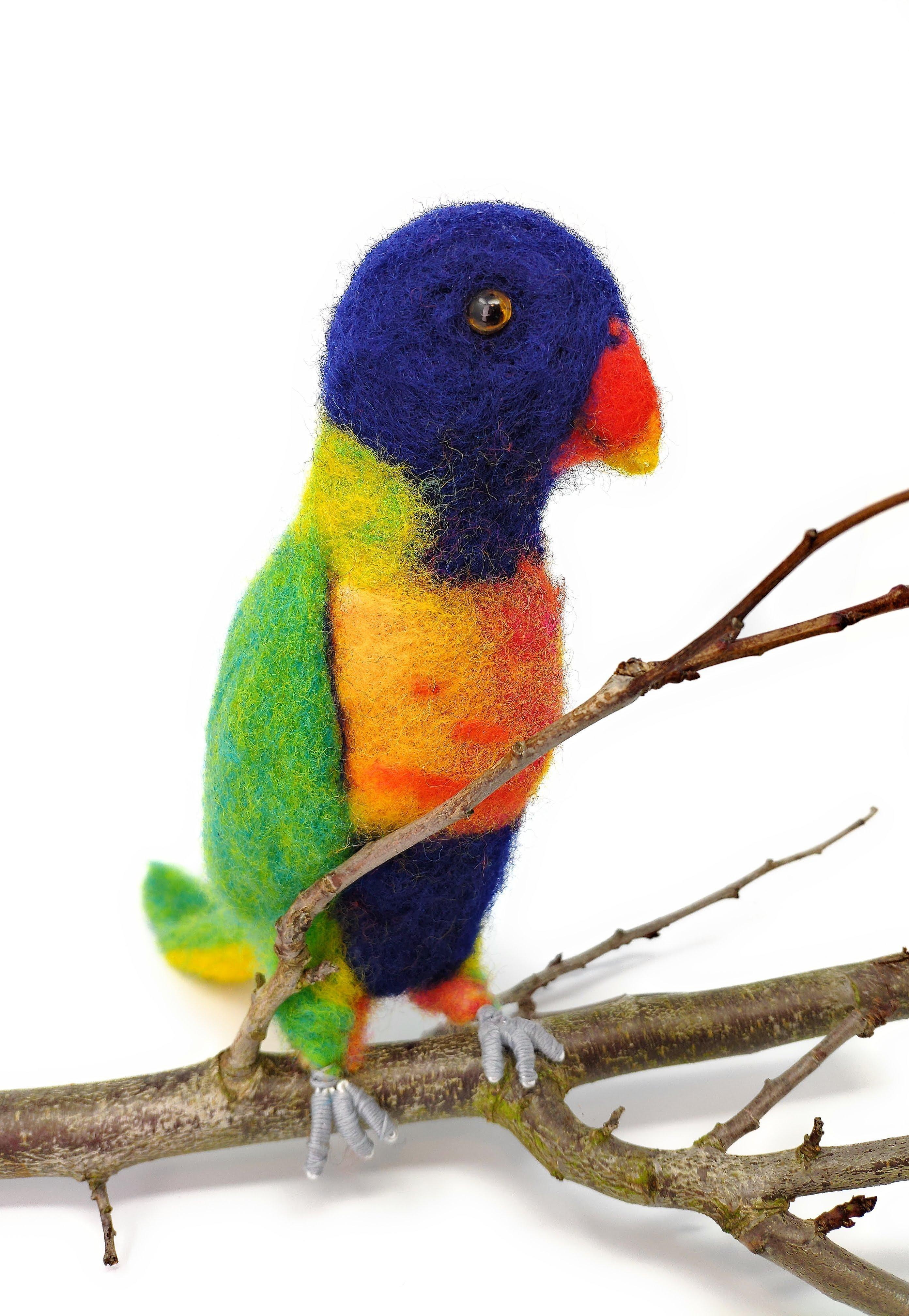 Rainbow Lorikeet Felting Kit