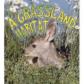 A Grassland Habitat (Introducing Habitats)