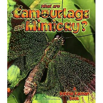 What are Camouflage and Mimicry? (Science of Living Things)