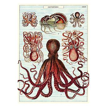 Cavallini Octopods Octopus Wrapping Paper Poster