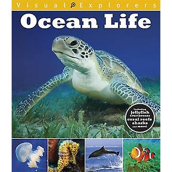 Visual Explorers Ocean Life by Paul Calver