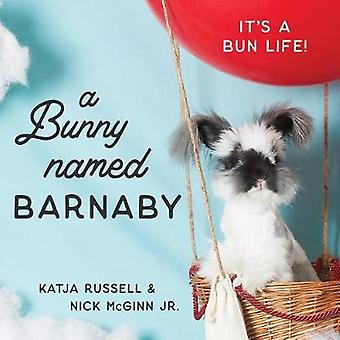 A Bunny Named Barnaby - It's a Bun Life by Katja Russell - 97816844221