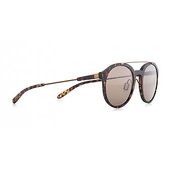 Sunglasses Unisex Shadwell Brown (001)