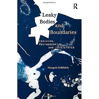 Leaky Bodies and Boundaries: Feminism, Postmodernism and (Bio)ethics