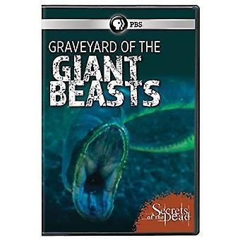 Segredos dos mortos: importação EUA cemitério de animais gigantes [DVD]