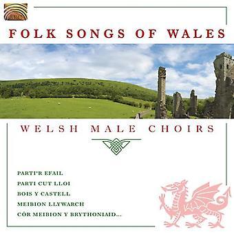 Volkslied van Wales-Welsh mannelijke koren - Folk Songs van Wales [CD] USA importeren