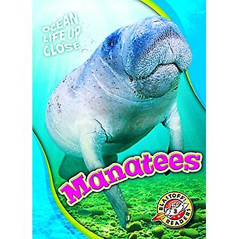 Manatees by Rebecca Pettiford - 9781626175709 Book