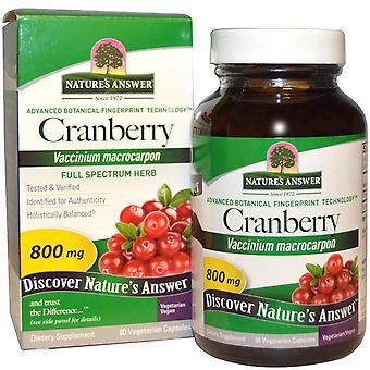 Respuesta de Nature's, Arándano, 800 mg, 90 Cápsulas Vegetarianas