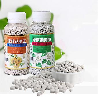 Food Organic Fertilizer Spreader For Flower, Green Radish, Succulent Orchid