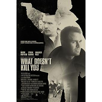 What Doesnt Kill You Movie Poster (11 x 17)