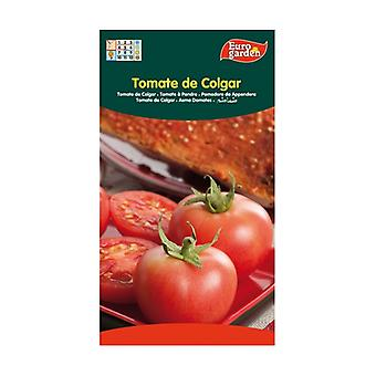 Hanging Tomato Seeds 1 unit