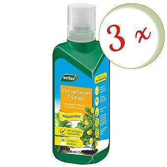 Sparset: 3 x WESTLAND® citrus plants fertilizer, 500 ml