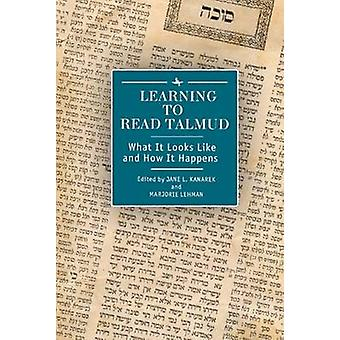 Learning to Read Talmud - What It Looks Like and How It Happens by Jan