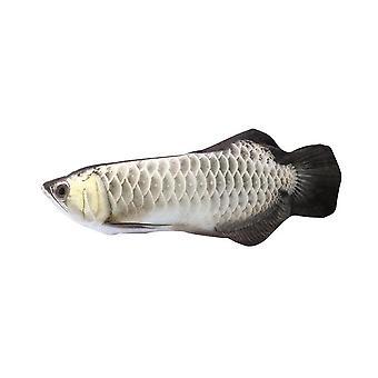 Hal plüss macskafogó kisállatjáték, amely utánozza a dobogó halat