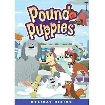 Pound Puppies: Vakantie Hijinks [DVD] USA importeren