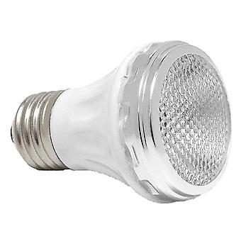 Pentair 650139Z 60W lamp SpaBrite Par 16