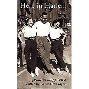Ici à Harlem: poèmes à plusieurs voix