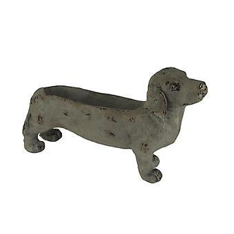 Har vært grå stein finish Dachshund hund innendørs utendørs planter statue