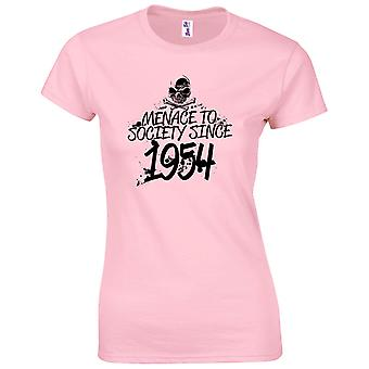 65 års fødselsdag gaver til kvinder hendes trussel mod samfundet 1954 T-shirt