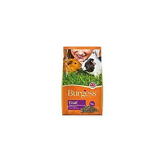 Burgess Excel Blackcurrant And Oregano Guinea Pig Food