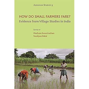 How Do Small Farmers Fare? - Evidence from Village Studies in India b