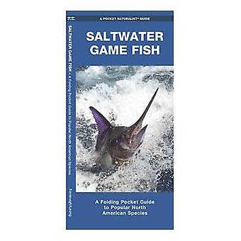 Saltwater Game Fish - A Folding Pocket Guide to Popular North American