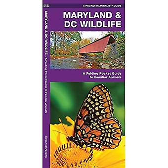 Maryland & DC Wildlife: An Introduction to Familiar Species (Pocket Naturalist Guides)