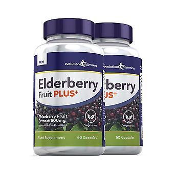 Vlierbes fruit plus vlierbessen fruit extract 600mg (5% flavanoids)-120 capsules-evolution afslanken
