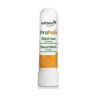 Propolis nasal stick 1 unit