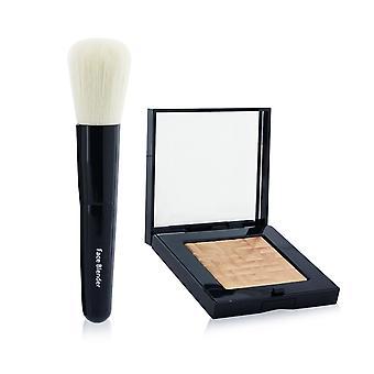 Fremhævning pulver sæt (1x fremhævning pulver + mini ansigtsbørste) #bronze glød 261869 2pcs