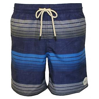 О ' Нил Санта Крус Band полосатые шорты плавать, синий/серый